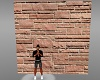 Brick or Stone Wall