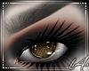 [L4]Brown Eye