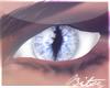 |BB|Ice Dragon Eyes
