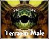 Terrapin Turtle Eyes