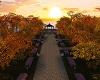 Autumn's Rising Sun