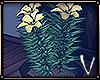 FLOWERS ᵛᵃ