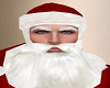 Santa Eye Brows