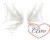 Wings White Dragon