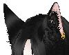 {GM} Blk Fox Yokai Ears