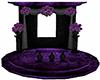 Bl Purple Wed Photo