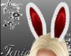 (T) Bunny Ears Fur red