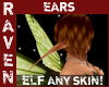 ANYSKIN ELF EARS!