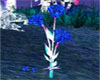 Valentine Rose Animated