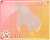 [Pets] Luci | claws