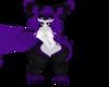Violet Sugarglider Kini