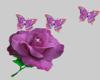 RoseAndButterflies