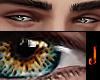 𝕁  nomad eyez