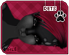 [Pets] Ziro | hair v8