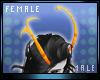 M * Karnal Horns