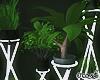 Planter w Neon Holder