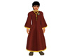 Red Wizard Robes