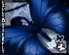 [L] Blue Butterfly