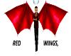 red flying wings,