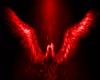 ~OP~ Broken Wings