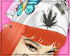 ⭐ carrot head