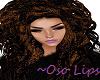 Lipgloss 4 Mesh Heads
