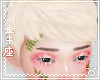 ♉ Roan Blonde