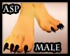 (ASP) Furry Paws Male
