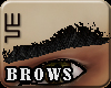 [wsn]Brows#BLACK