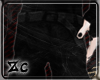 zC| Shorts*BK*
