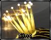 S; Noble Crown