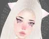 Snowy Hamster Ball