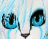  Curux  -F. Eyes