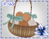 Farm Girl Eggs Basket