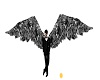 LC Animated Black Wings