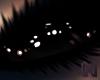 KOBE Black Bat Eyes M/F