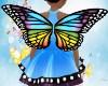 Kid Butterfly Wings