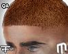 Short Fade - Ginger