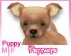 Chi Puppy (Vanillia)