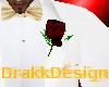 [DF]Pocket Rose