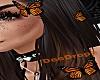 -D-Monarch butterflies