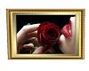 sweet girl rose