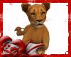 *D* Lion Cub