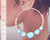 Carolina Hoops Earrings