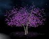 Spring Dreams tree