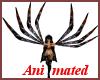 !A Animated Boomerang