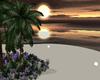 NORA Sun Tropic Romance