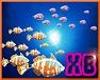 XB - FISH ENHANCER 1