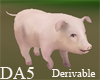 (A) NewBorn Pig