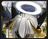 ✡ Excalibur Halo
